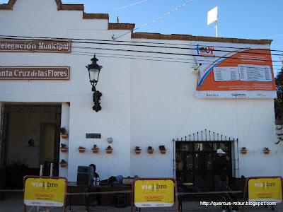 Promoción en la Delegación municipal de Santa Cruz de las Flores