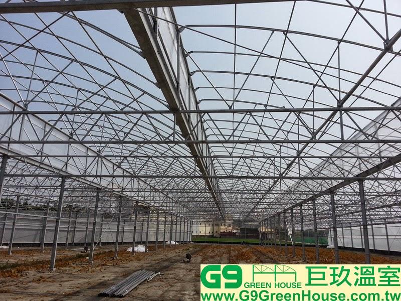 24.圓鋸鋼骨加強型溫室結構全部鋼材連接完成準備覆蓋結構農膜外觀
