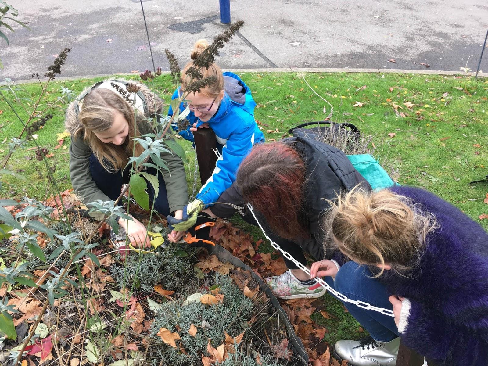 the cherwell pta winter festival volunteer sign up