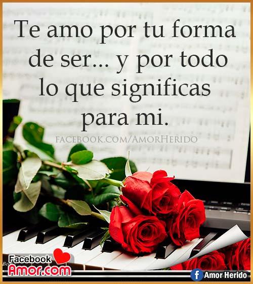 flores rosa con pensamientos de amor
