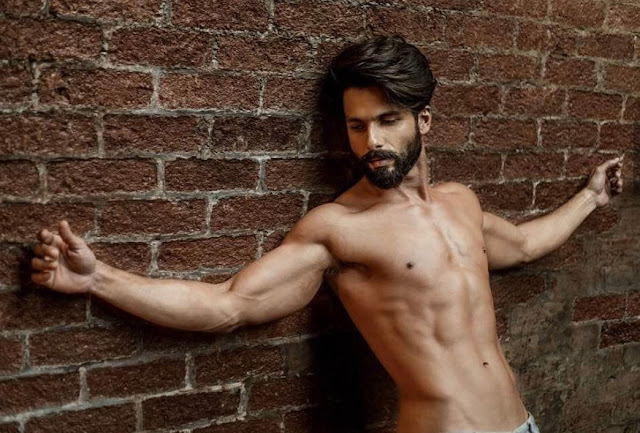 Shahid Kapoor - Go on, stare for a while!