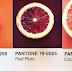 Συνδυάζοντας πράγματα με χρώματα Pantone