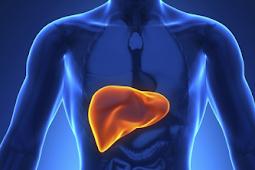 Obat Tradisional Liver Bengkak