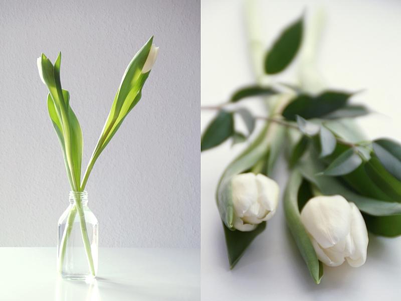 Dekoration mit weißen Tulpen - Frühlingsboten im Januar | Tasteboykott