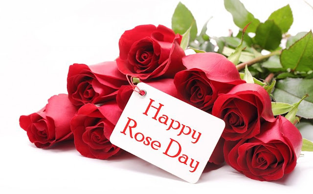 Happy Rose Day Images,