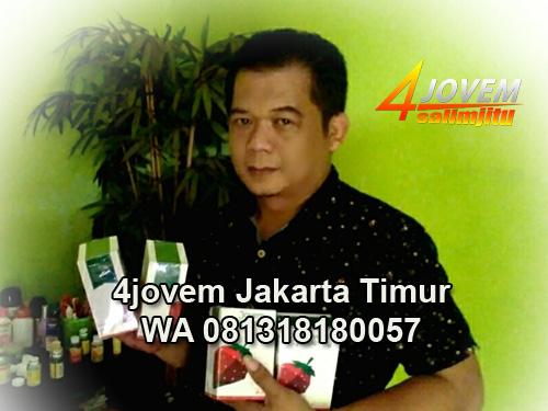 Leader Jovem Jakarta