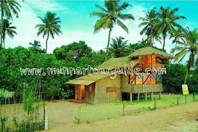 beach cottage alleppey beach villa photos, beach villa guest house in alleppey