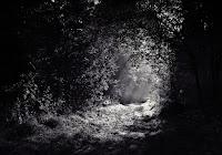 Preghiera nella notte. Nello notte solo lo spirito conosce il cammino da compiere verso la libertà.