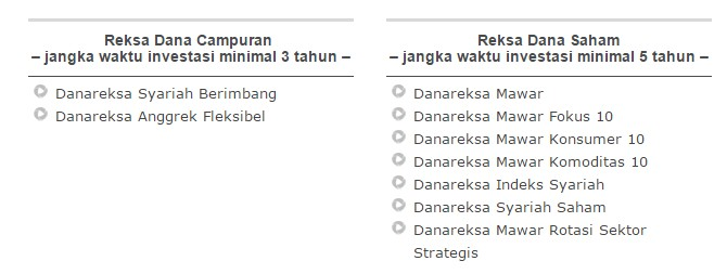 danareksa investment management