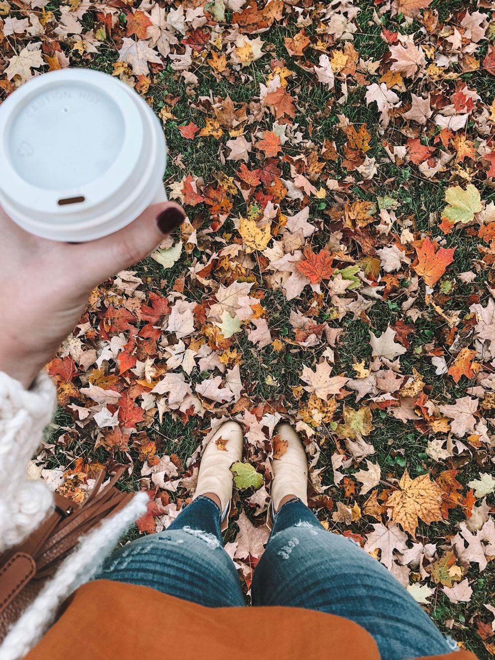 fall foliage leaf peeping