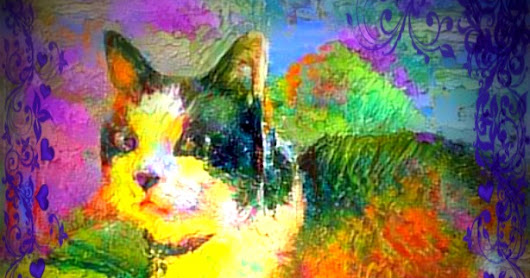 Caturday Art-Snowshoe Spring Pond Colors Kitty