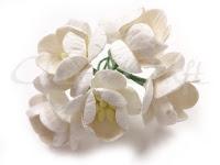 https://cherrycraft.pl/pl/p/Kwiat-wisni-BIALE-5-szt.-Wild-Orchid-Crafts-/2259