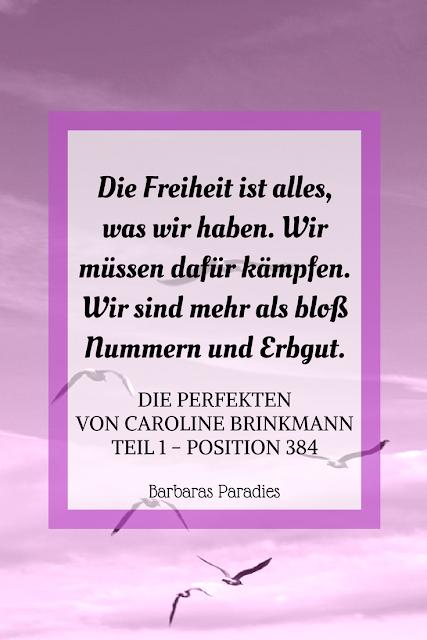 Buchrezension #161 Die Perfekten von Caroline Brinkmann