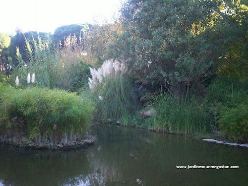 Lámina de agua que proporciona frescor en el jardín