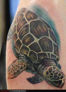 Turtle dove tattoo - photo#34