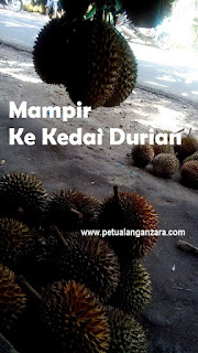 durian anyer