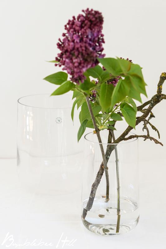Flieder In Der Vase flieder in der vase h lt l nger frag mutti bl hende zweige der flieder in