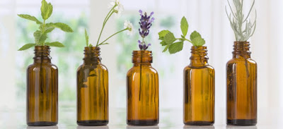 E To L Essential Oils, All You Need To Know