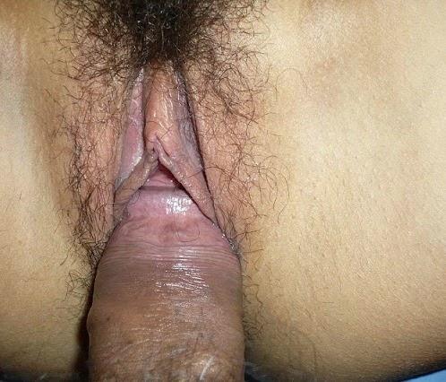 fri pornografi porno video