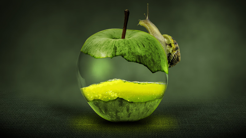 Snail on Green Apple