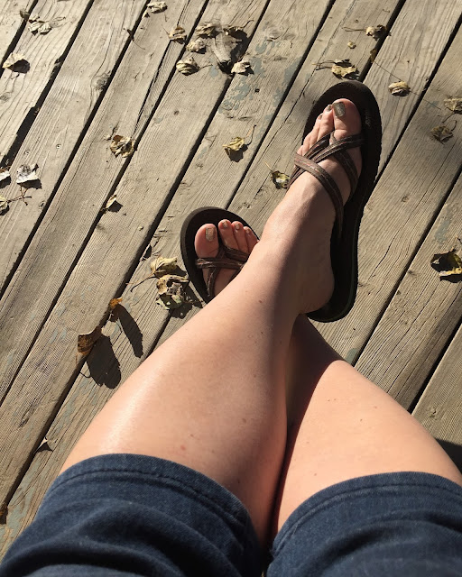 The Porch Postscript - Life Snapshots Week 6