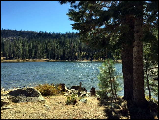 Siskiyou county camping gumboot campground for Lake siskiyou resort cabins