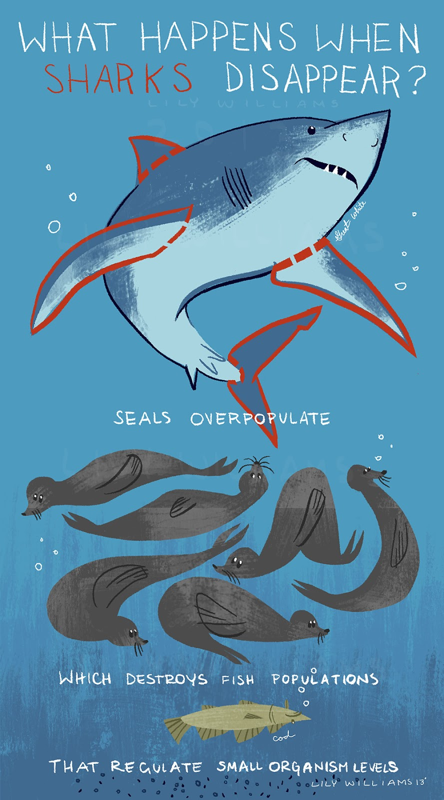 What Happens In A Youtube Minute Infographic: Lily Williams: What Happens When Sharks Disappear?