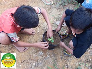 gambar anak menanam pohon