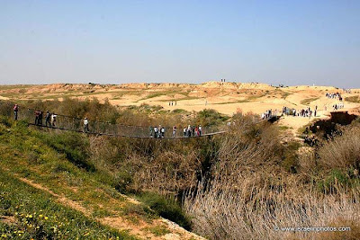 Eshkol National Park, Suspension bridge