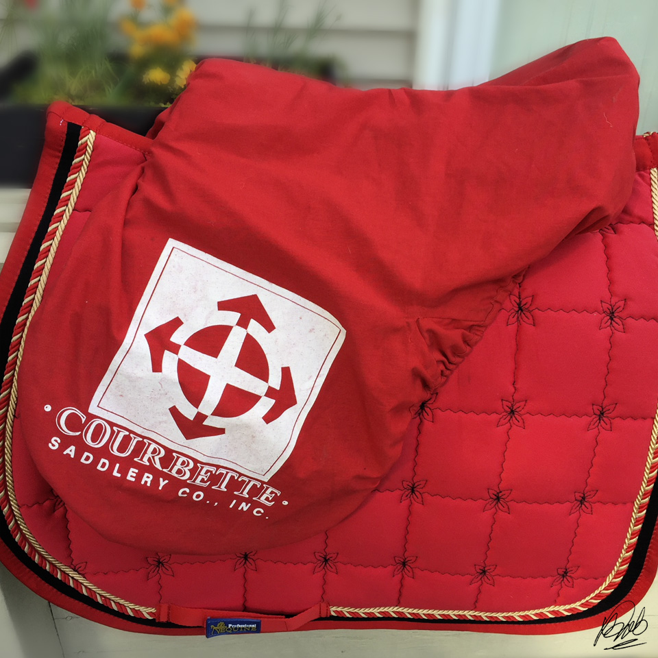Courbette saddle cover, new stirrup irons and leathers
