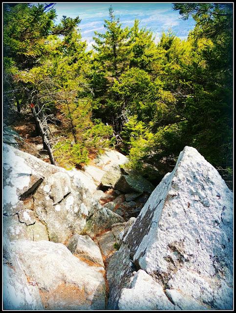 Zona Rocosa del Sendero del Monadnock State Park (NH)