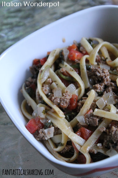 Italian Wonderpot // You can never have too many one pot meal recipes ready in under 30 minutes in your arsenal! #recipe #onepot #easymeals #easydinner #beef #pasta