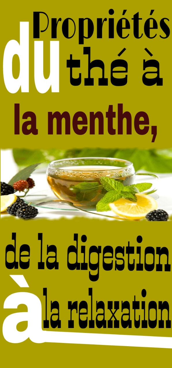 Propriétés du thé à la menthe, de la digestion à la relaxation