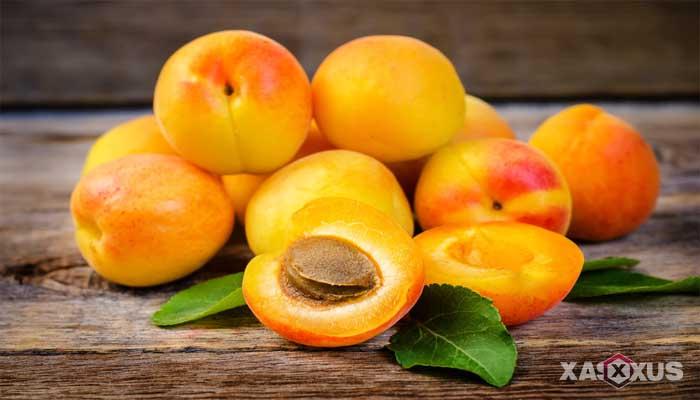 Makanan penambah darah - Aprikot, buah penambah darah