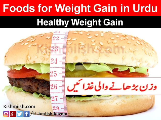 Wazan Badhane Ka Tarika in Urdu, Jism Ko Mota Karne wali gaza, Foods for Weight Gain in Urdu, weight gain food tips in urdu, weight gain tips in urdu, Health Tips In Urdu, Urdu Health Tips, Urdu Tips, Desi Totkay, Desi Ilaj, how to gain weight In Urdu,