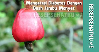 Mengatasi Diabetes dengan Jambu Monyet