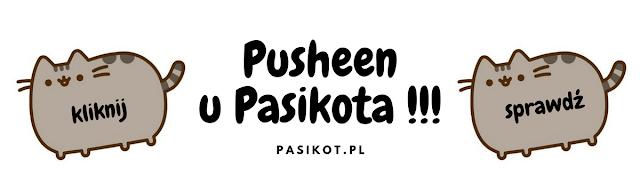 zabawki z Kotem Pusheen