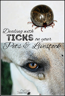 How to deal with ticks on your pets and livestock, and a few ideas to prevent them.