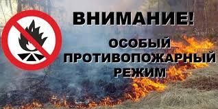 (ФОТО) Сухой Лог Особый противопожарный режим