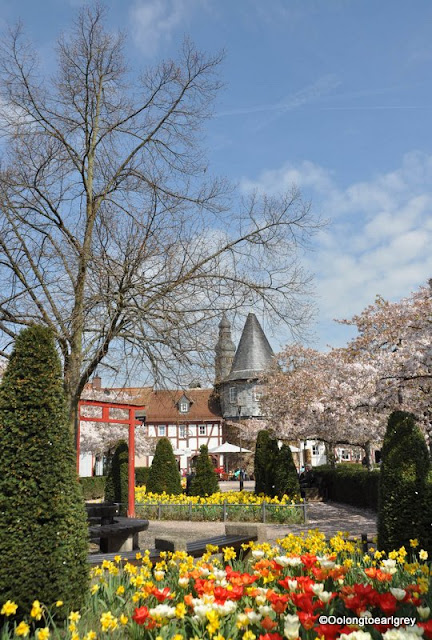 Spring,  Hofheim, Germany