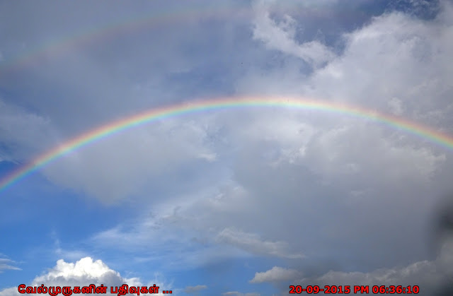 Full Rainbow in Florida Welleby Park