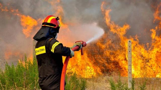Γιάννενα: Η Δημοτική Αρχή ευχαριστεί όλους όσους συνέδραμαν στην αντιμετώπιση των πυρκαγιών