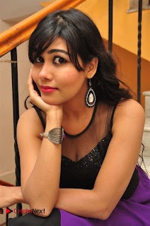 Telugu Actress Rachana Smith Stills at Money is Honey Audio Release  0031.jpg