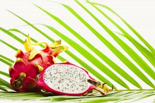 Buah naga atau dragon fruit termasuk salah satu jenis buah yg eksotik Buah Naga Bermanfaat Mengobati Kanker dan Penyakit Lainnya