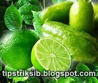 resep-dan-cara-membuat-obat-batuk-herbal-tradisional-yang-ampuh-dan-manjur