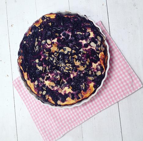 Topfenkuchen mit Waldheidelbeeren_My Kitchenlogbook by Marlene Grünzweil