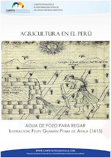 Sistema de regadío Inca (Agua de Pozo)