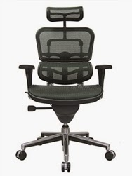 Ergohuman Mesh Chair