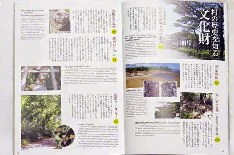 Ginoza Village, Okinawa,book, Japanese and English