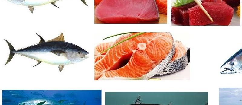 Manfaat Ikan Tuna untuk Kesehatan tubuh Secara Alami